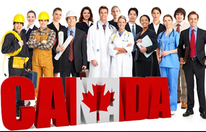 Bảng tỉ lệ thiếu nhân lực theo từng tỉnh bang ở Canada